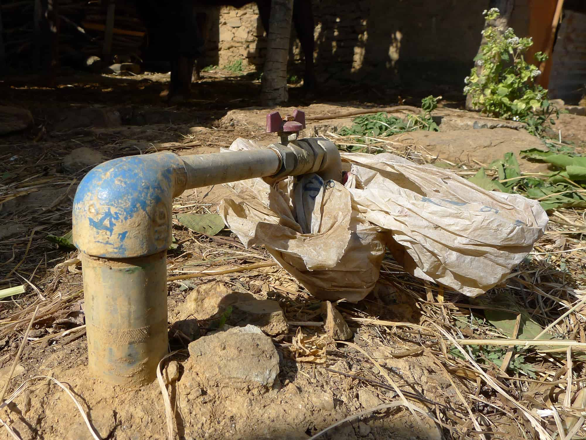 Environment – Nepal Seeds